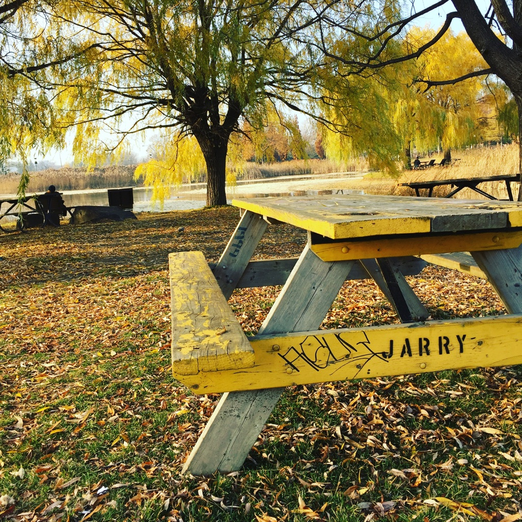 Parc Jarry - Montréal